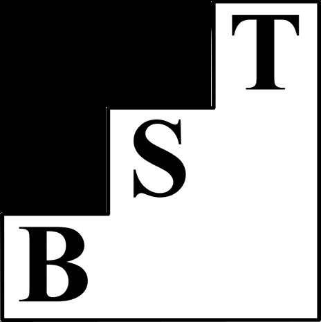 BST Management-Beratung